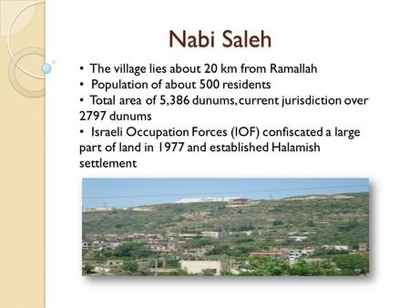 Nabi Saleh The village lies about 20 km from Ramallah Population of about 500 residents Total area of 5,386 dunums, current jurisdiction over 2797 dunums.