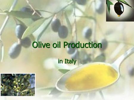 Olive oil Production in Italy. Countries with higher production of olive oil are Spain, Italy and Greece. ITALY is the second olive oil producer in the.