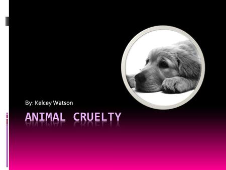 By: Kelcey Watson. Animal abuse is cruel and wrong. Animals provide so much for us that the least we can do is provide them with humane treatment.