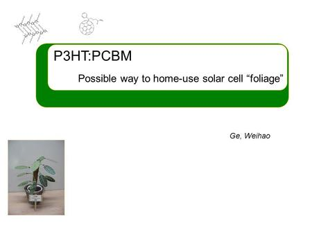 "P3HT:PCBM Possible way to home-use solar cell ""foliage"" Ge, Weihao."