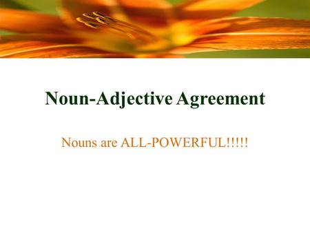 Noun-Adjective Agreement Nouns are ALL-POWERFUL!!!!!