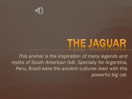 This animal is the inspiration of many legends and myths of South American folk. Specially for Argentina, Peru, Brazil were the ancient cultures lived.