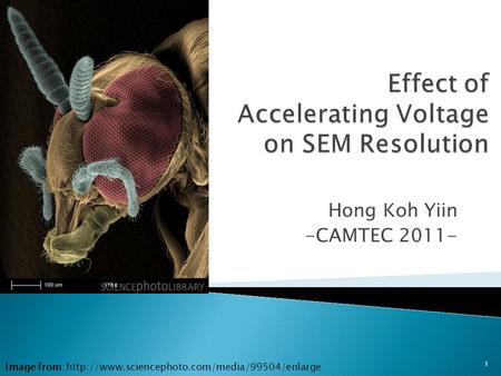 Hong Koh Yiin -CAMTEC 2011- 1 Image from: