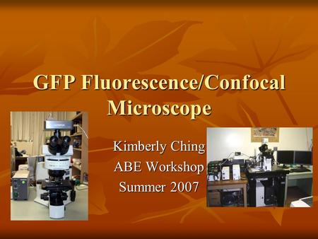 GFP Fluorescence/Confocal Microscope Kimberly Ching ABE Workshop Summer 2007.