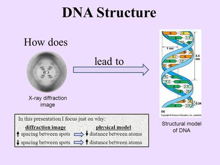 DNA Structure How does lead to X-ray diffraction image Structural model of DNA In this presentation I focus just on why: diffraction image physical model.
