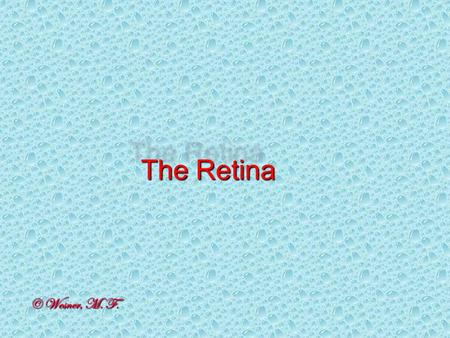 The Retina © Wesner, M. F.. We know there is retinal heterogeneity.