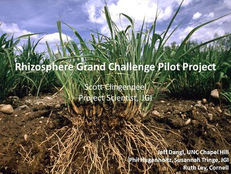 Jeff Dangl, UNC Chapel Hill Phil Hugenholtz, Susannah Tringe, JGI Ruth Ley, Cornell Rhizosphere Grand Challenge Pilot Project Scott Clingenpeel Project.