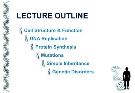 LECTURE OUTLINE Cell Structure & Function DNA Replication Protein Synthesis Mutations Simple Inheritance Genetic Disorders.