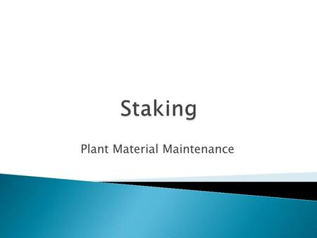 Plant Material Maintenance.  Compared to un-staked trees, staked trees will: