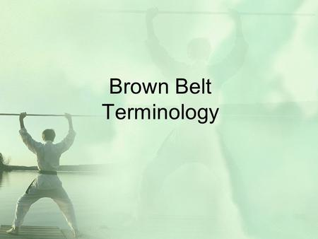 Brown Belt Terminology. Instructions Each word will appear at the top of the slide. After 5 seconds, the definition will appear below (Hint: Click your.