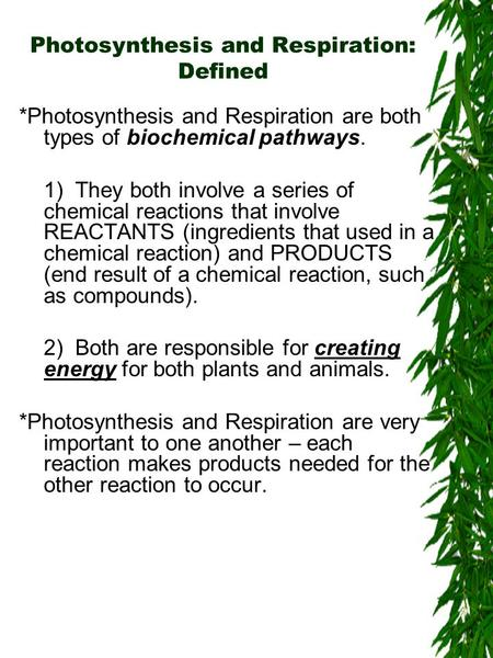 Photosynthesis and Respiration: Defined *Photosynthesis and Respiration are both types of biochemical pathways. 1) They both involve a series of chemical.