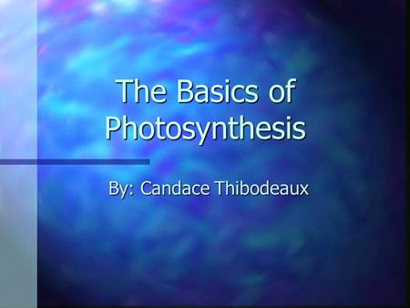 The Basics of Photosynthesis By: Candace Thibodeaux.