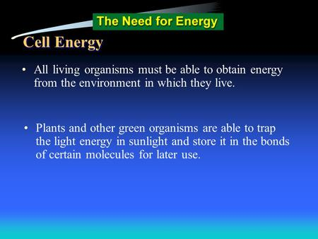 Cell Energy All living organisms must be able to obtain energy from the environment in which they live. Plants and other green organisms are able to trap.