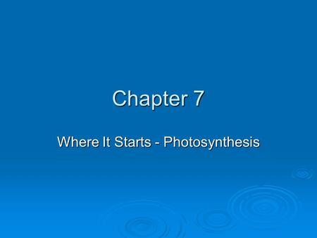 Where It Starts - Photosynthesis