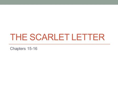 The Scarlet Letter Chapter 11 15 Summary