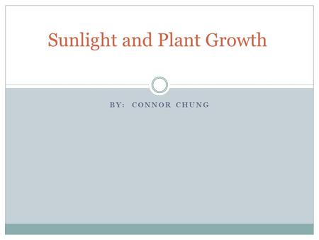 BY: CONNOR CHUNG Sunlight and Plant Growth. Big Question Does amount of sunlight a plant receives have an affect on it's growth?