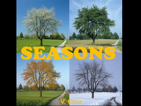 SEASONS V. Cruz.