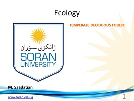 Ecology TEMPERATE DECIDUOUS FOREST M. Saadatian.
