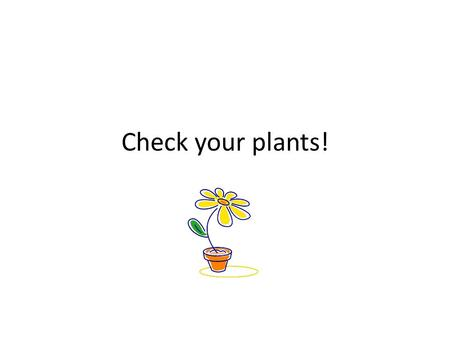 Check your plants!. Venus Fly Trap  LmY  LmY Why does the venus fly trap.