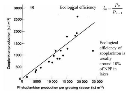 Ecological efficiency of zooplankton is usually around 10% of NPP in lakes Ecological efficiency.