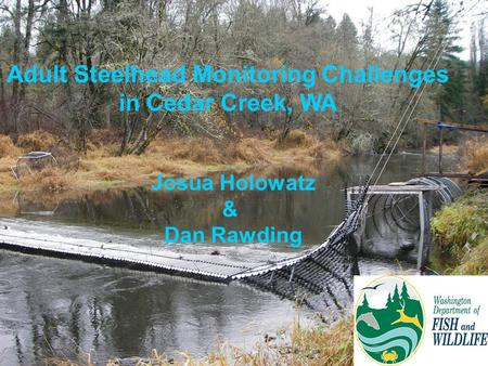 Adult Steelhead Monitoring Challenges in Cedar Creek, WA Josua Holowatz & Dan Rawding.