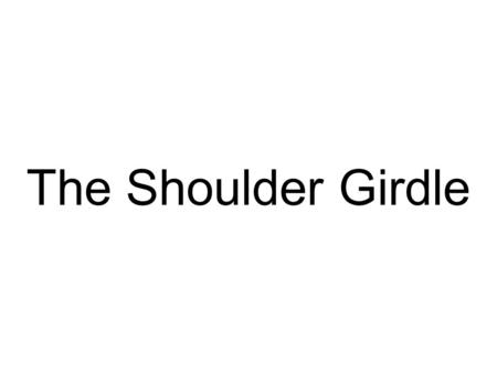 The Shoulder Girdle. Shoulder Girdle Bones Clavicle and Scapula –Move as a unit.