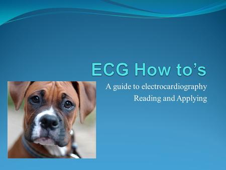 A guide to electrocardiography Reading and Applying