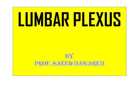The lumbar plexus, which is one of the main nervous pathways supplying the lower limb, is formed within the psoas major muscle from the anterior rami.