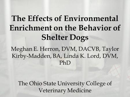 The Effects of Environmental Enrichment on the Behavior of Shelter Dogs Meghan E. Herron, DVM, DACVB, Taylor Kirby-Madden, BA, Linda K. Lord, DVM, PhD.