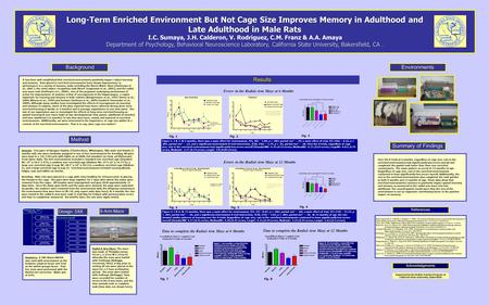 Long-Term Enriched Environment But Not Cage Size Improves Memory in Adulthood and Late Adulthood in Male Rats I.C. Sumaya, J.H. Calderon, V. Rodriguez,
