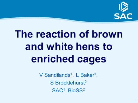 1 The reaction of brown and white hens to enriched cages V Sandilands 1, L Baker 1, S Brocklehurst 2 SAC 1, BioSS 2.