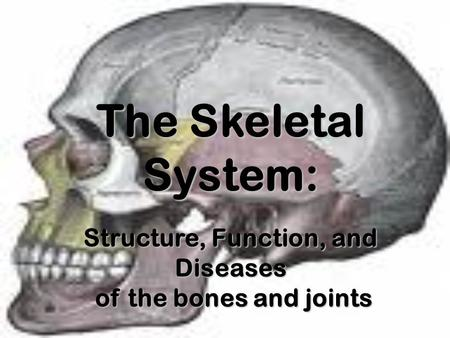 The Skeletal System: Structure, Function, and Diseases of the bones and joints of the bones and joints.