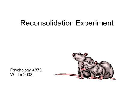 Reconsolidation Experiment Psychology 4870 Winter 2008.