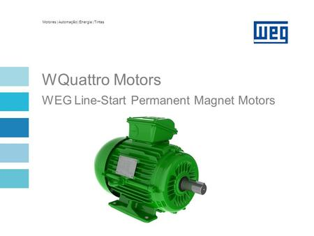 Overview Hybrid motor: induction + permanent magnet + reluctance
