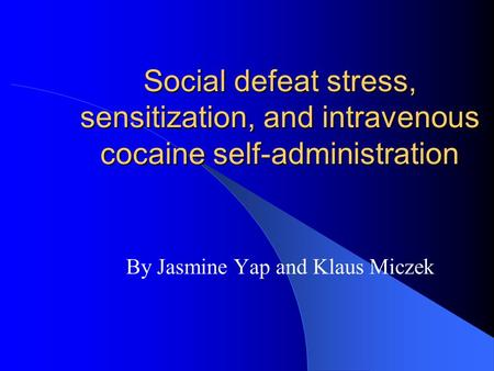 Social defeat stress, sensitization, and intravenous cocaine self-administration By Jasmine Yap and Klaus Miczek.
