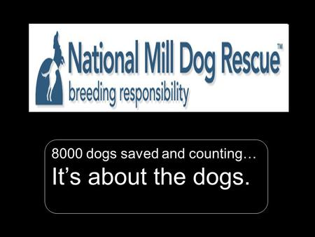 N ational M ill D og R escue 1 8000 dogs saved and counting… It's about the dogs.