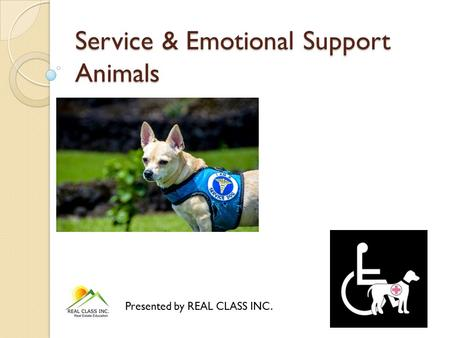 Service & Emotional Support Animals Presented by REAL CLASS INC.