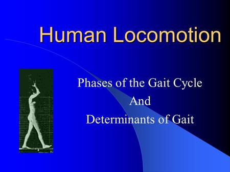 Human Locomotion Phases of the Gait Cycle And Determinants of Gait.
