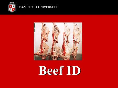 Beef ID. Chuck Rib Loin Round Flank Plate Brisket Shank Various Variety.