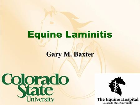 "Equine Laminitis Gary M. Baxter. Definitions Inflammation of the laminaeInflammation of the laminae –Numerous inciting causes –Laminitis vs. ""founder"""