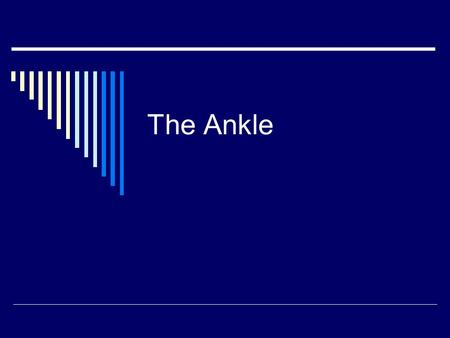 The Ankle. ANATOMY OF THE ANKLE Range of Motion/Strength Test  Inversion  Eversion  Plantar Flexion  Dorsiflexion.