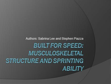 Authors: Sabrina Lee and Stephen Piazza. I. Introduction  The fastest sprinters: Higher proportion of fast-twitch muscle fibers Larger leg muscles A.