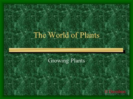 The World of Plants Growing Plants G Davidson. Structure of a seed In order to reproduce, flowering plants produce seeds. Seeds contain nearly everything.