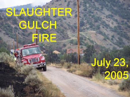 SLAUGHTER GULCH FIRE July 23, 2005. REPRESENTATIVE FUELS.