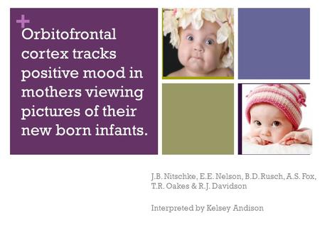 + Orbitofrontal cortex tracks positive mood in mothers viewing pictures of their new born infants. J.B. Nitschke, E.E. Nelson, B.D. Rusch, A.S. Fox, T.R.