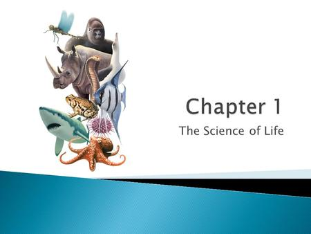 Chapter 1 The Science of Life.