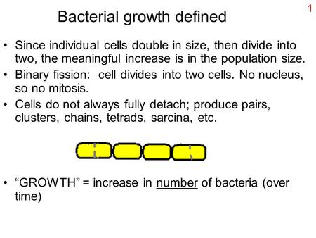 1 Bacterial growth defined Since individual cells double in size, then divide into two, the meaningful increase is in the population size. Binary fission: