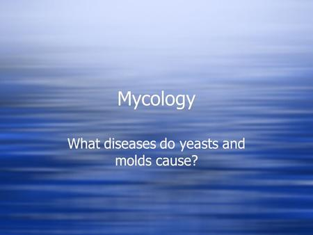 What diseases do yeasts and molds cause?