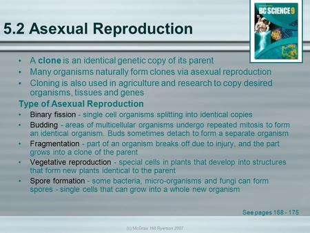 an analysis of the cloning process as an asexual reproductive process