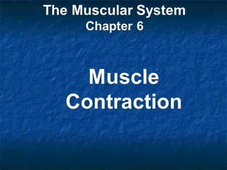 The Muscular System Chapter 6 Muscle Contraction.